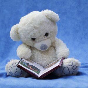 teddybearbook
